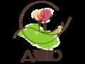 Dzvinko_logo_color_2