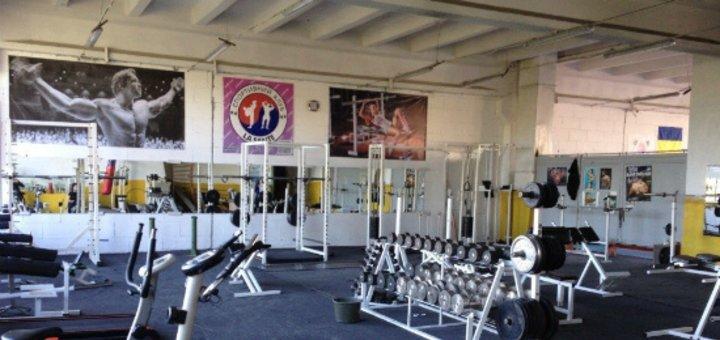 Скидка на абонемент на занятия в тренажерном зале или Taekwondo WTF в спорт-клубе «La Sante»
