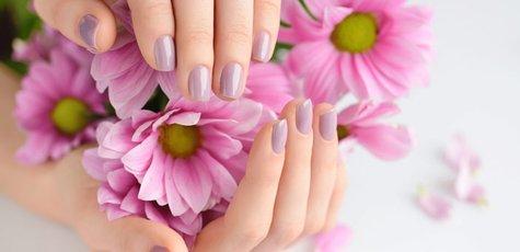 Shutterstock_569022502